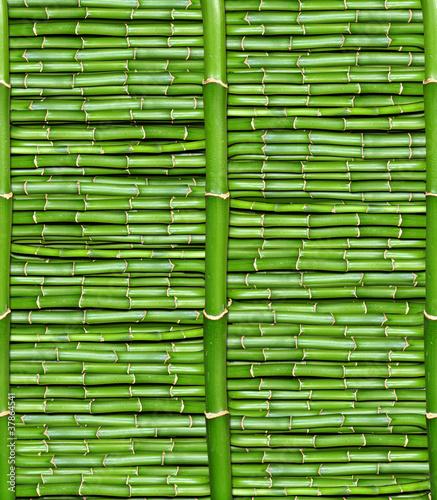 bambus-tapeta