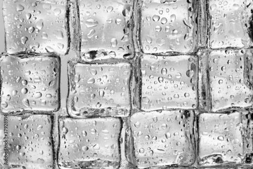 Staande foto Paardebloemen en water Melting ice cubes closeup