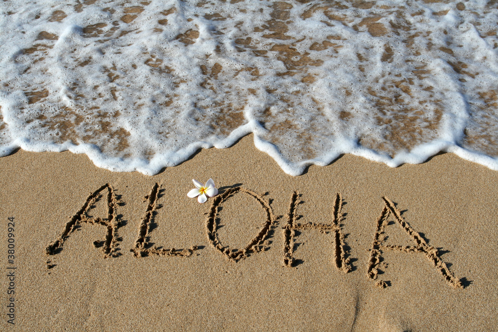 Fototapeta Aloha in Sand, Hawaii, USA