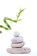 galets zen et pousse de bambou