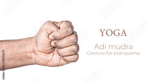 Fotografie, Obraz Yoga Adi mudra