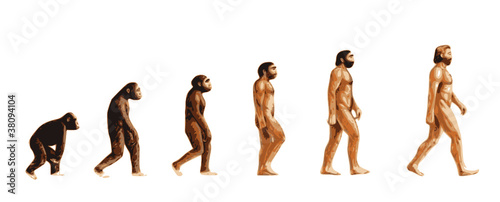 Fototapeta Evolution de l'homme couleur obraz