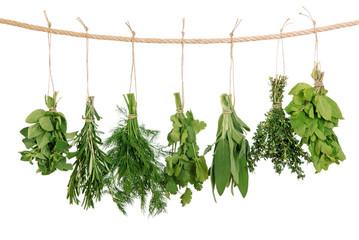Obraz na Szkle Fresh herbs