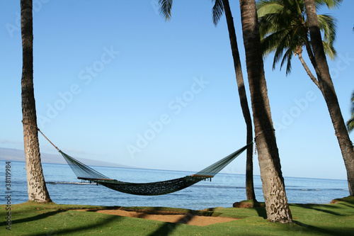 Photo  Hammock on the Beach