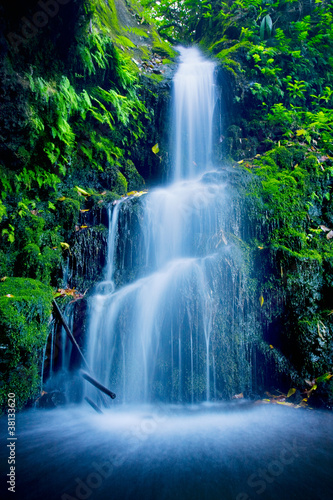 Beautiful Lush Waterfall - 38133620