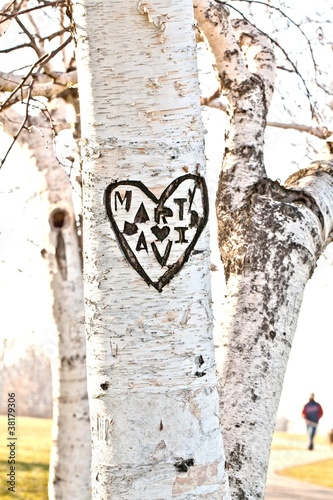 Photo Romance Carved in a heart