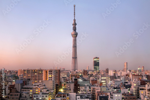 Canvas Prints Japan Tokyo Sky Tree, Japan