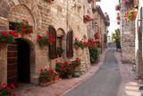 Średniowieczna uliczka w kwiatach