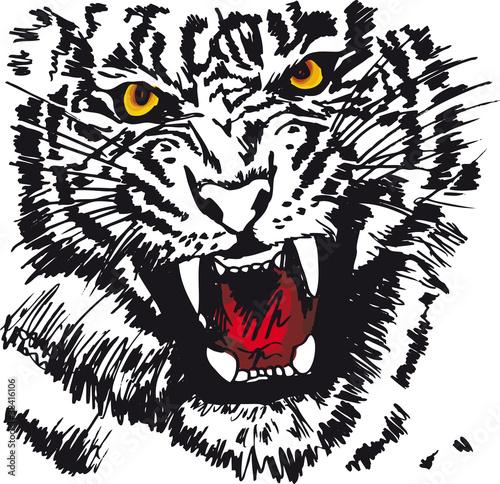 Deurstickers Hand getrokken schets van dieren Sketch of white tiger. Vector illustration