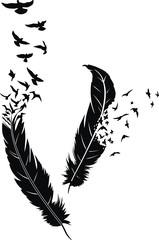 Fototapeta Ptaki Feather