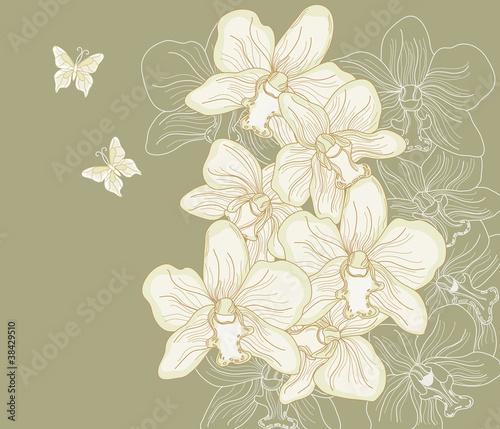 orchidee disegnate a mano libera su sfondo scuro