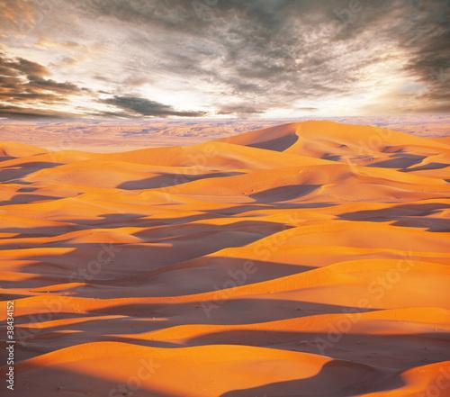 Deurstickers Baksteen Desert