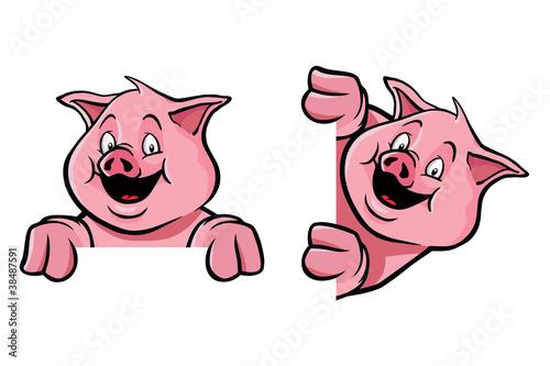 Fotografie, Obraz  Pig frame decoration
