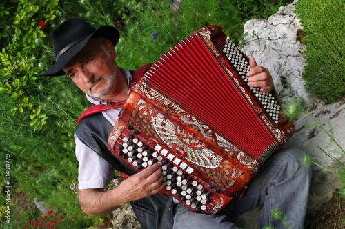 Fotografia, Obraz  accordéoniste