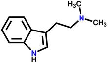 Dimethyltryptamine Structural ...
