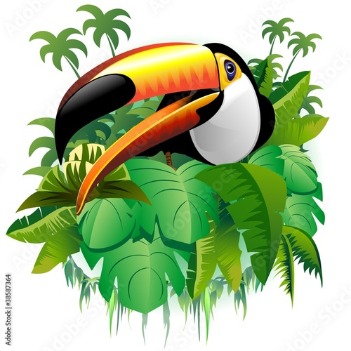Door stickers Draw Tucano Vegetazione Tropicale-Toucan on Tropical Plants-Vector