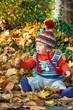 little child is sitting in autumn foliage