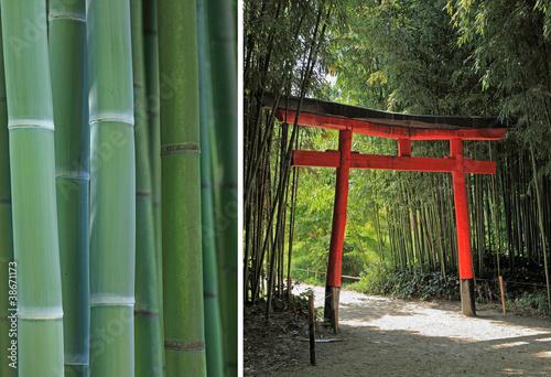 dyptyk-na-temat-bambusa-i-ogrodu-japonskiego