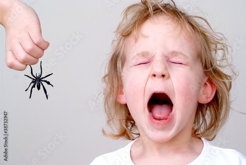 Fotografie, Obraz  Mädchen hat Angst vor Spinne