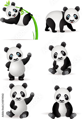Panda cartoon Poster
