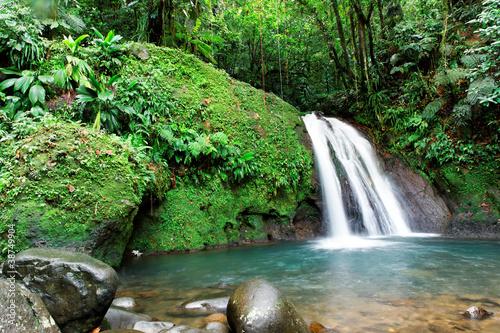Foto auf AluDibond Wasserfalle Cascade en foret tropicale