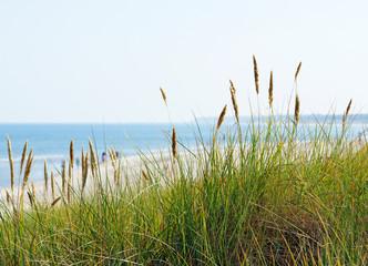 FototapetaAm Meer - At the Beach