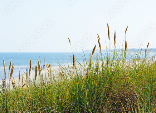 Foto-Rollo - Am Meer - At the Beach (von DOC RABE Media)