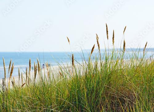 Foto-Schiebegardine Komplettsystem - Am Meer - At the Beach