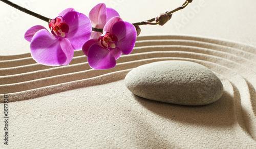Foto op Plexiglas Stenen in het Zand simplicity purity aesthetics beauty