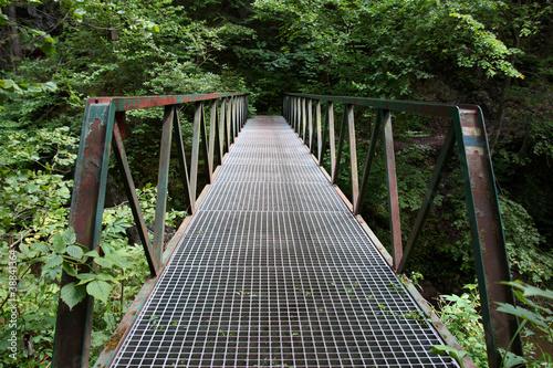 Fényképezés old metal footbridge in the woods