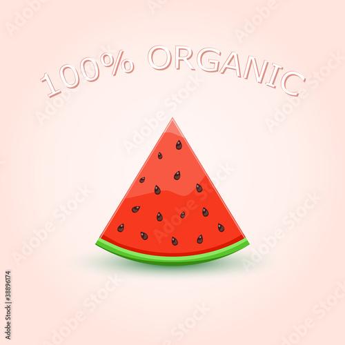 Staande foto Retro sign 100% Organic Watermelon Slice