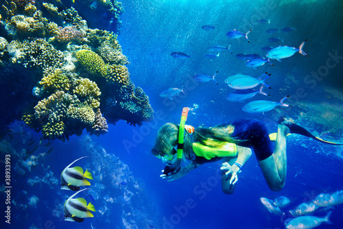 Fotobehang Duiken Group of coral fish in blue water.