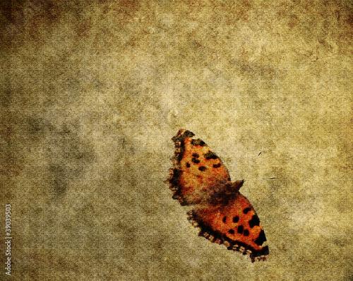 Fotobehang Vlinders in Grunge Grunge butterfly