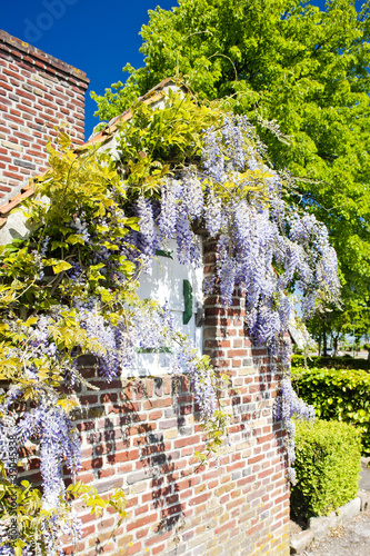 In de dag Noord Europa house with flowers, Nord-Pas-de-Calais, France