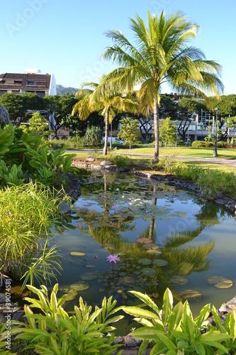 Photo Jardins de Paofai