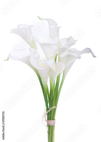 Fotografie, Obraz  bouquet of calla lilies