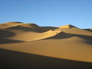 Fototapeta na wymiar Marche dans le désert