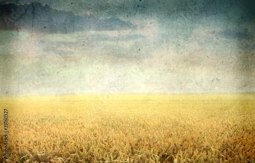 Foto op Plexiglas Retro Country vintage