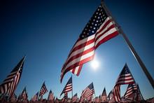 American Flag Display Commemorating National Holiday