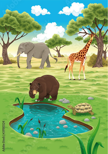 Wall Murals Bears Animals in the nature. Vector realistic illustration.