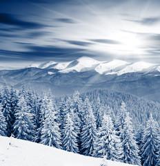 Panel Szklany Góry Winter