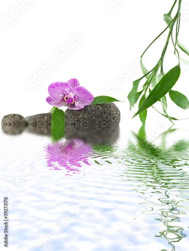 wystroj-zen-relaks-woda-orchidea-kamyki-bambus