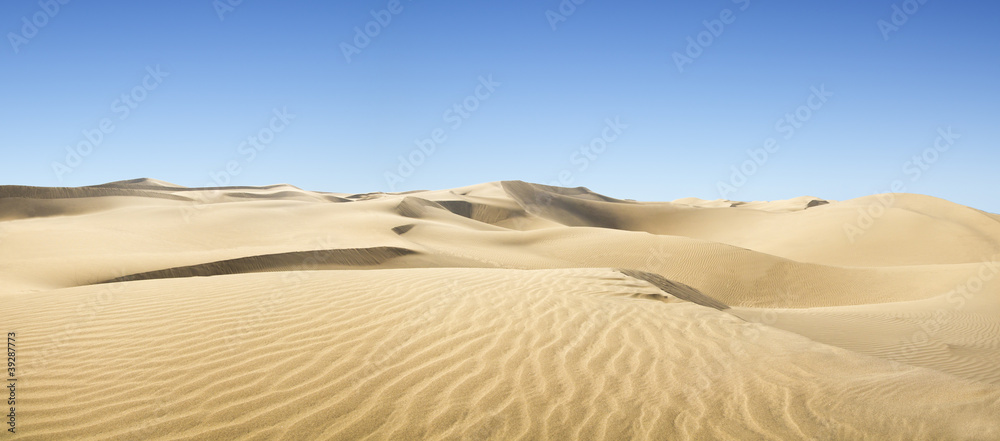 Fototapeta Gold desert.