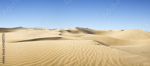 Canvas Print Gold desert.