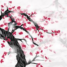 Cherry Blossom In Spring Ispir...