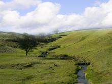 North Yorkshire Moors Yorkshir...