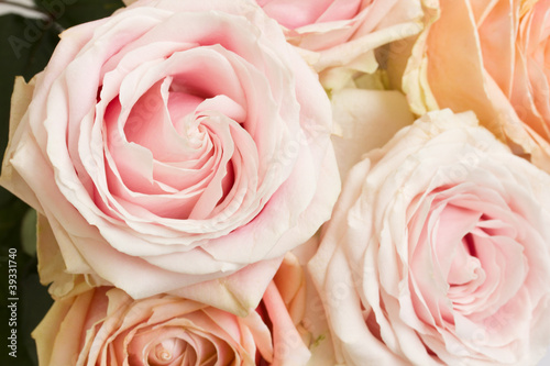 bouquet of roses © neirfy