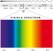 Electromagnetic Spectrum And Visible Light. Electromagnetic Spectrum Of Possible Frequencies Of Electromagnetic Radiation With Colors Of The Visible Spectrum. Illustration On White Background. Vector.