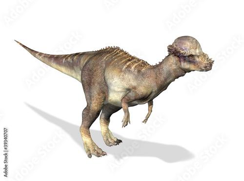 Photorealistic 3 D rendering of a Pachycephalosaurus. Wallpaper Mural