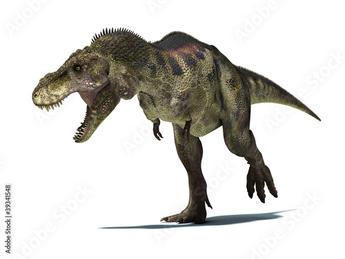 Photo  Tyrannosaurus Rex, isolated on white background with clipping pa